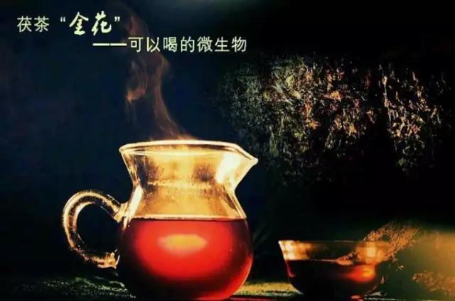 湖南黑茶四大独特之美,美得让人惊叹不已....